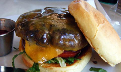 2009 0405 Counter_Burger