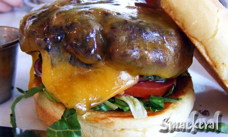 2009 0405 Counter_Burger2